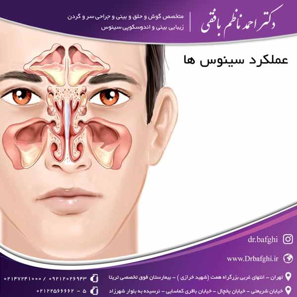عملکرد سینوس ها دکتر احمد ناظم بافقی